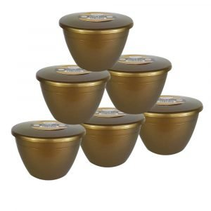 1 Pint Gold Pudding Basins with Lids