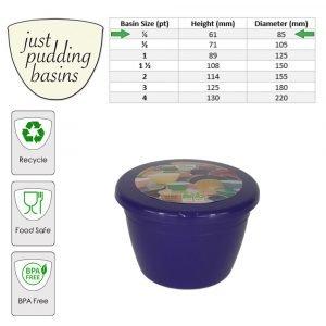 purple 0.25pt size